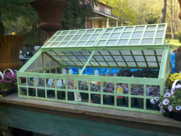 Keep Your Plants Healthy and Safe With a Small Garden Greenhouse