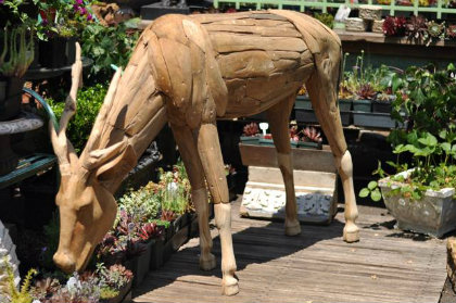 Beautiful Garden Deer That Won't Eat Your Plants