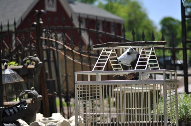 Uses for Decorative Bird Cages in the Home and Garden