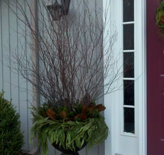 Consider Adding Winter Branches to Your Container Gardens