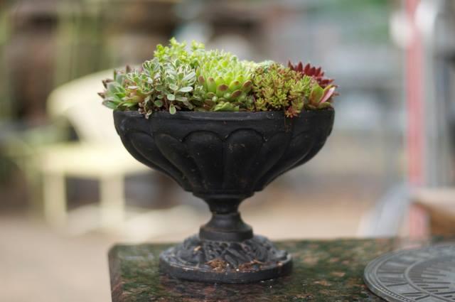 garden design accessories