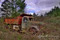 On Ladd Hill Rd, south of Sherwood, Oregon