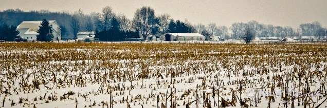 Looking eastward over the neighbor's corn stubbles on a cold December day. Nappanee, Indiana