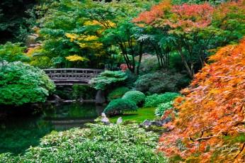 japanese Gardens, September 2010