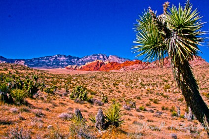 West of Las Vegas, Nevada