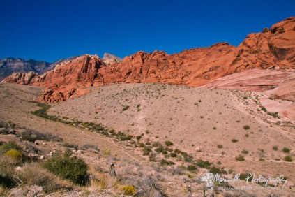 Red Rock Canyon; 10 miles west of Las Vegas. Red Rock Canyon National Monument