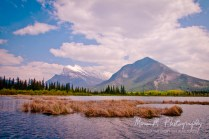 Banff Alberta, Canada; Mt Rundle and Sanson Peak in the distance