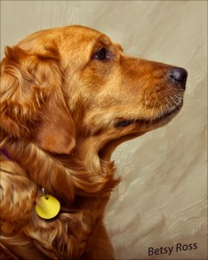 Betsy, the Golden