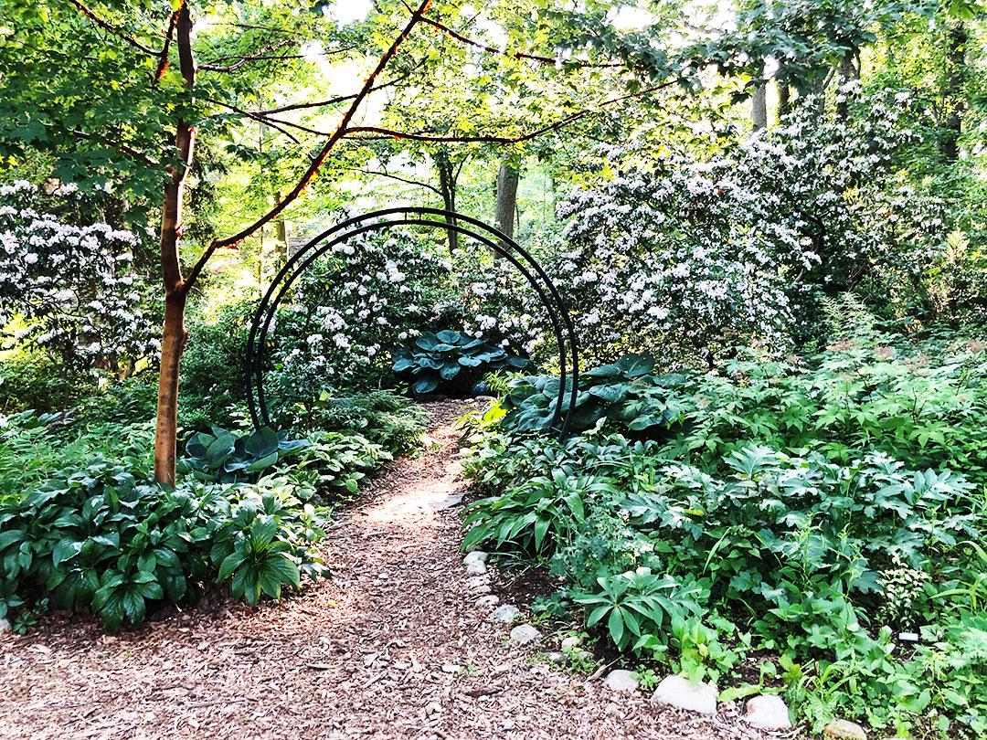 June 6, 2021 Garden Tour-Woodland Entrance