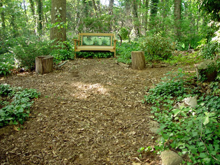 Woodland paths restored after the irrigation pipe installation in the garden of the Artist, Mary Ahern.