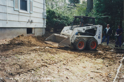 It was strange to see such a big bobcat driving into my precious garden