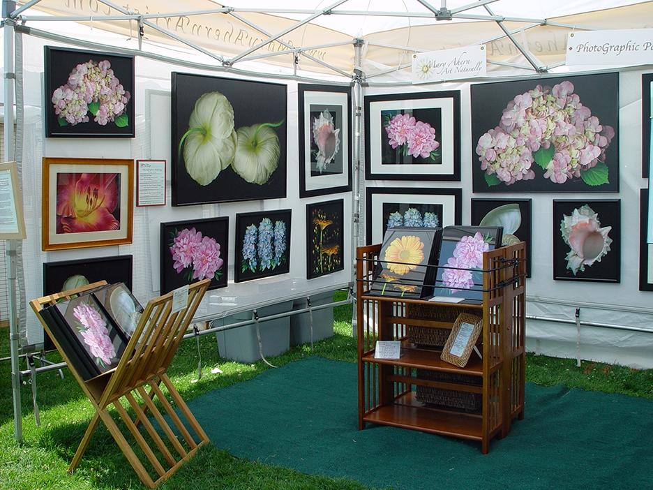 Art Festival Show Booth - Mary Ahern Artist.