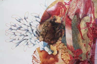 """""""11 Months of Lymphatic Carp""""; Steel wool and vinegar dye, spinach dye, digitally altered photographs, ink, colored pencil and graphite on paper; 108 x 78 cm.; 2015"""