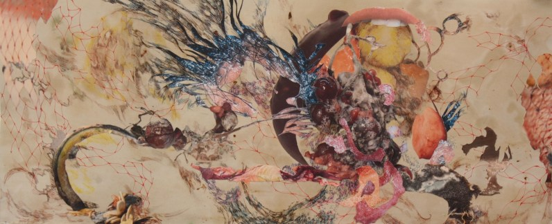 """Title: """"Ti Kallisti"""" Medium: Turmeric dye, decomposing organic materials, pomegranate juice, digitally altered images, acetone photograph transfer, colored pencil and ink on paper. Dimensions: 15.5"""" x 36"""" Year: 2013"""