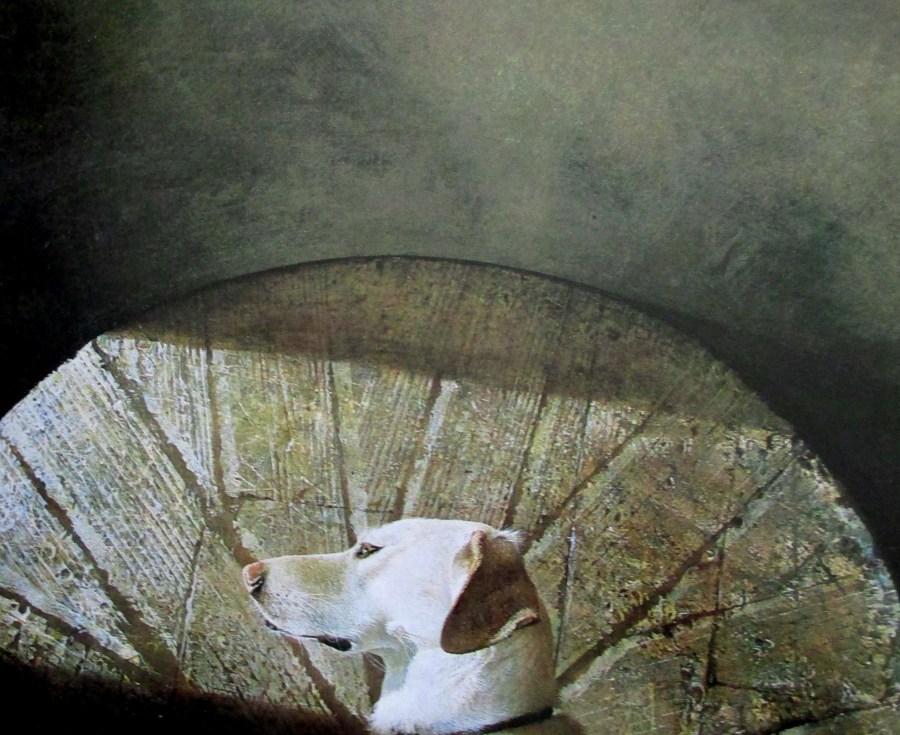 Andrew Wyeth - Equinox