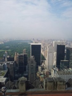 A great view of Central Park