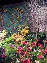 My Favorite - Sunflowers