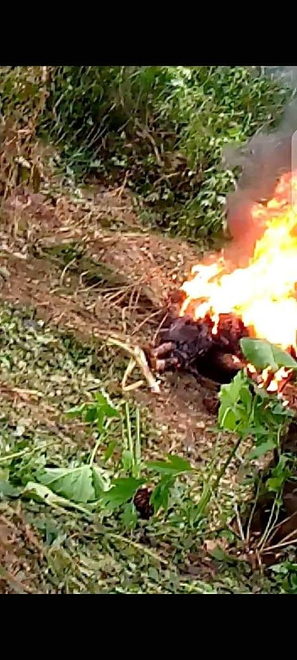 Two Men Burnt To Death In Imo Over Robbery Allegation (Graphic Photos)