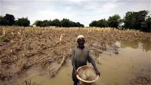 Climate change will be worse than Covid-19, FG warns