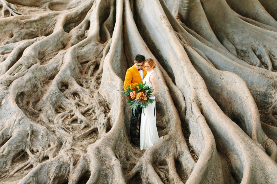 Couple snuggling in fig tree roots - www.marycostaweddings.com