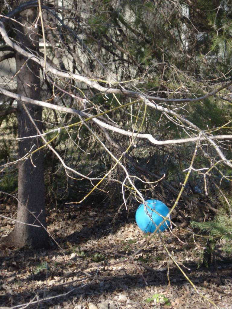"""""""Blue Ball,"""" photo by Mary Warner, April 4, 2016."""