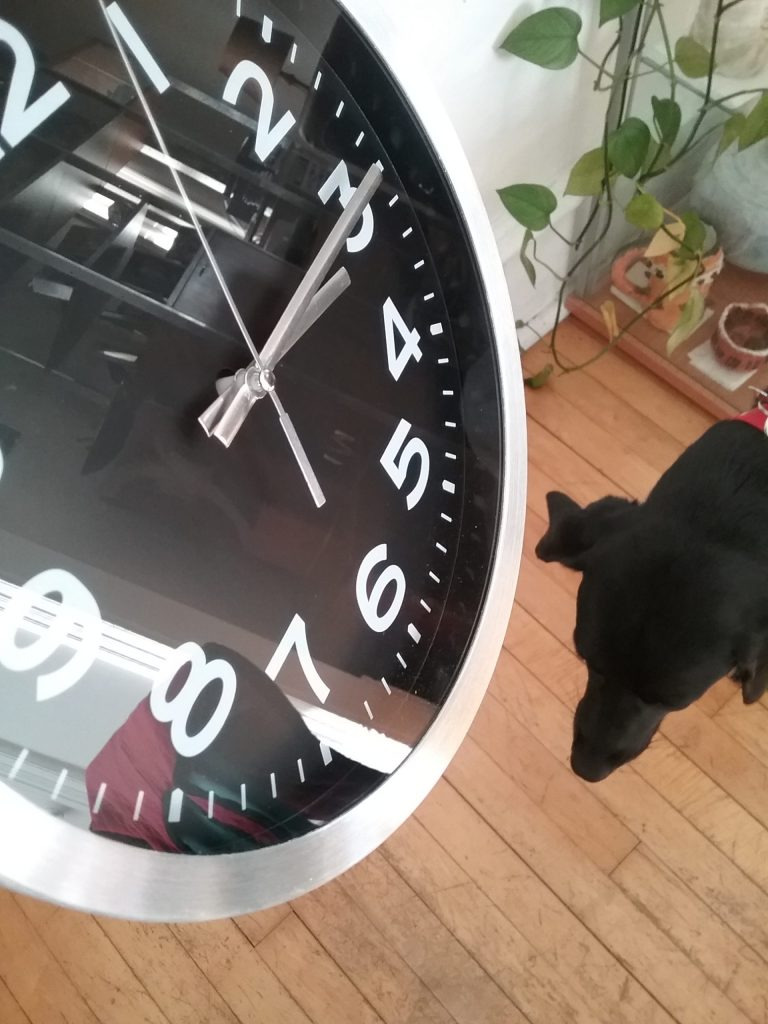Silver & black quartz wall clock, Threshold brand from Target, with my dog in the background, 2018.