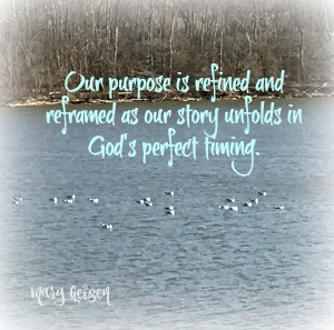The Lake Path ~ Rediscovering Life's Purpose