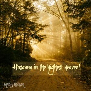 Sabbath Offerings ~ Hosanna