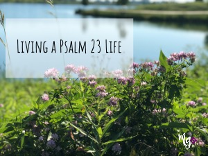 Living a Psalm 23 Life: God's Word in Action