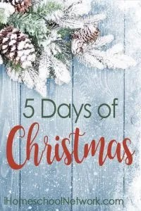 Several bloggers share their ideas for 5 Days of Christmas!