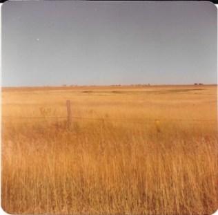 Lohr pasture land