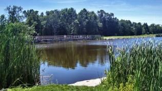 Forestville Dam