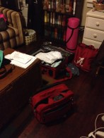 The trip began as all trips do - with me packing way too much.