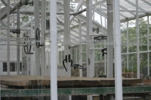 inside interior of glass conservatory