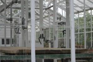 inside interior of glass conservatory