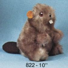 Beaver – #822