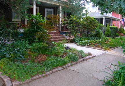 Grassless | Mary Olive Design on Grassless Garden Ideas  id=88482