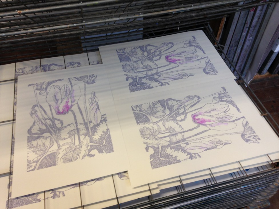 Prints drying on the rack