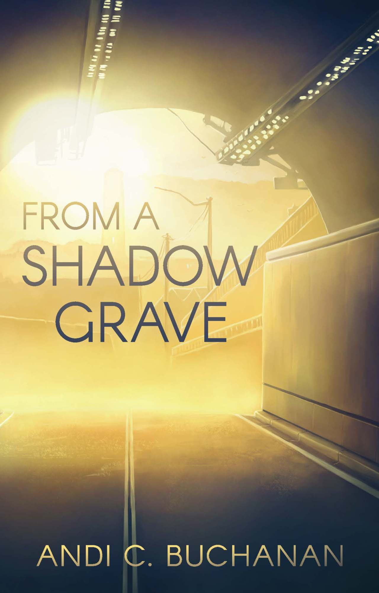 From a Shadow Grave cover image