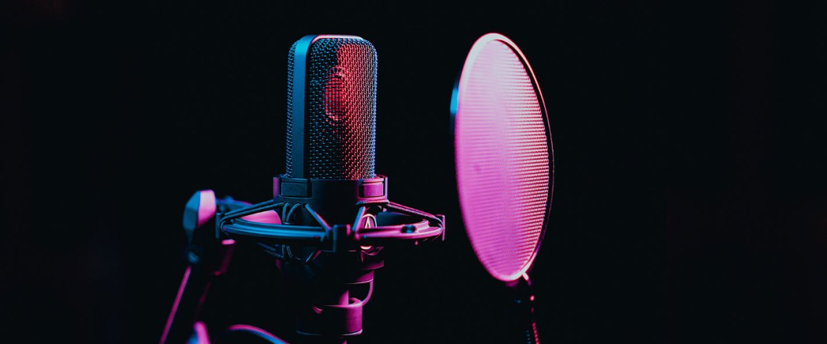 Microphone and pop screen