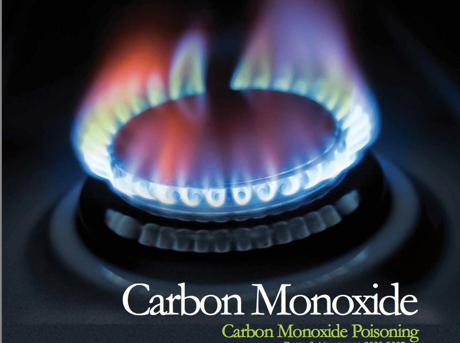 carbon monoxide report cover