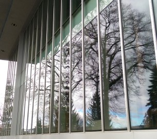 tree reflection facade