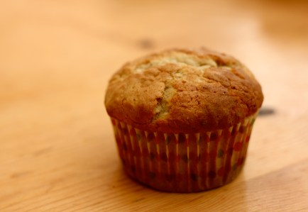 Lonely muffin