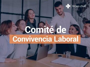 videochat_comite_convivencia_laboral_1