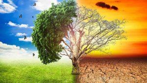 El cambio climático...