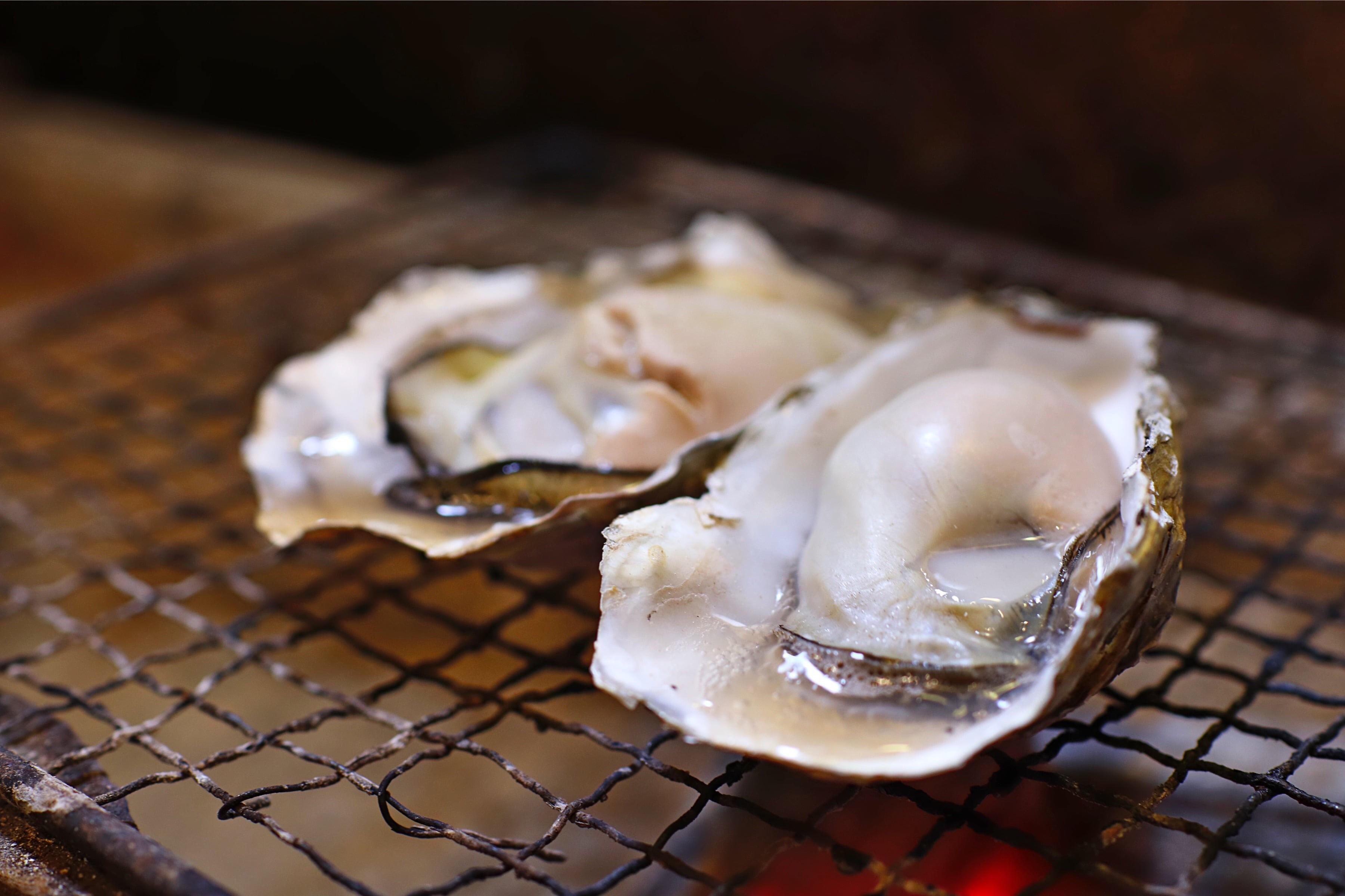 大厚岸の牡蠣
