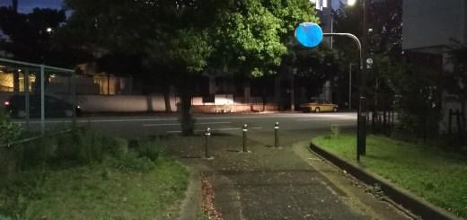 薄暗い散歩道