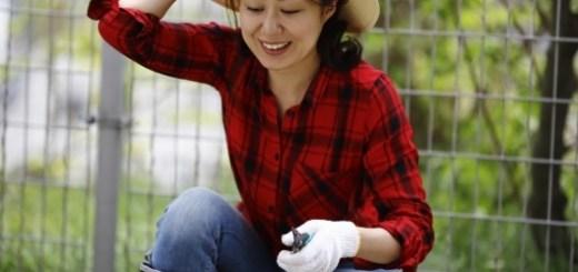 草むしりをする女性