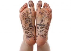 organen op voeten bij Voetreflex