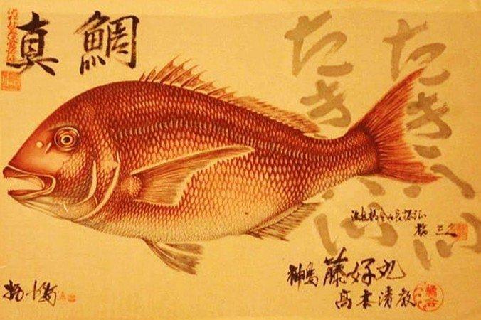 Удивительные «Гётаку»: кулинарные принты, сделанные с настоящей рыбы